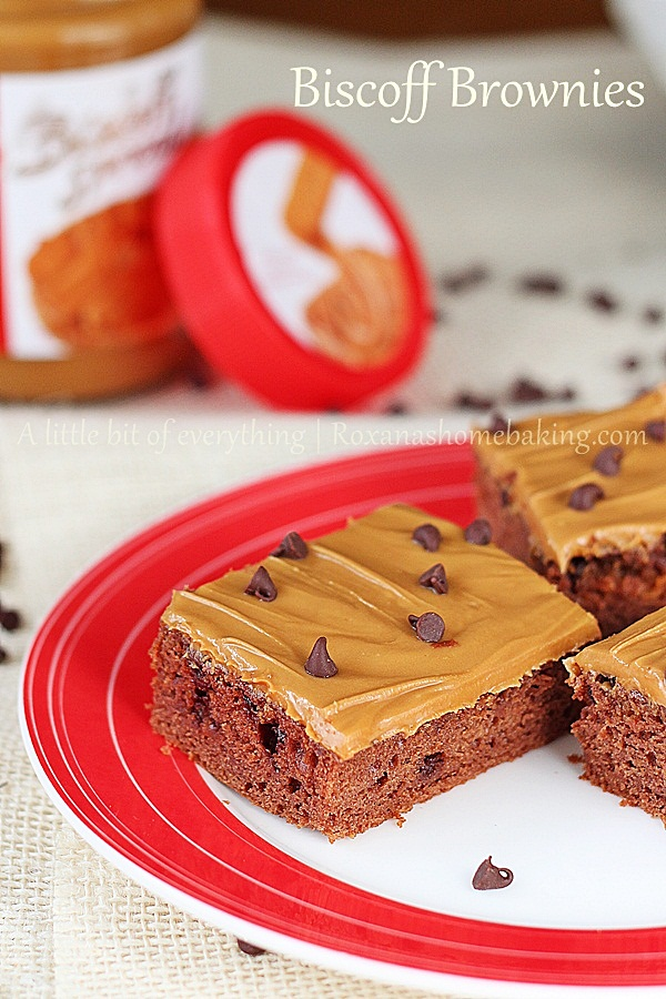Chocolate Chip Biscoff Brownies with Biscoff Frosting  | roxanashomebaking.com/