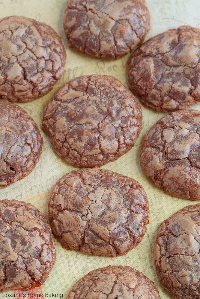 ... soft rich chocolate cookies with a few crunchy pieces in each cookie