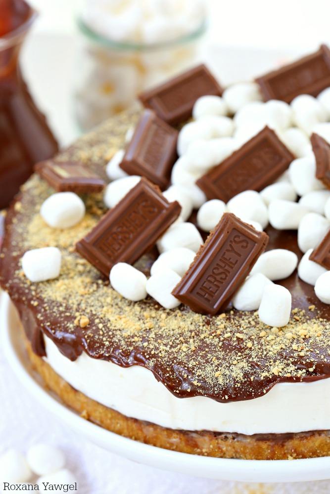 no bake smores cheesecake recipe 3