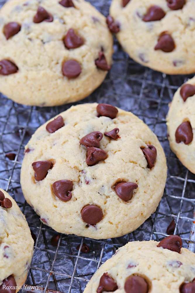Soft Chocolate Chip Sugar Cookies Recipe